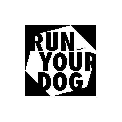 run-your-dog
